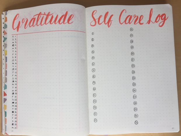 gratitude and self care log